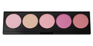 L'Oréal Infallible Blush Paint Palette, 1 Pink