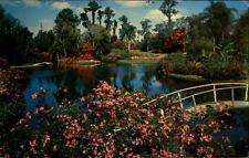 Florida USA VINTAGE POSTCARD 50er anni famous Cypress Gardens Lake Flowers A.O.