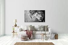 Sticker mural autocollant mural autocollant lion taille : 120 x 70 cm