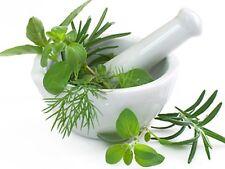 Herbal Medicines 24 Books Medicinal Herb Garden Survival Prepper CD DVD Culinary