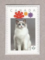 lq. RAGDOLL DOMESTIC CAT Picture Postage MNH stamp Canada 2016 [p16/05dc3/2]