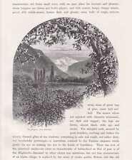 Jungfrau von Interlaken aus gesehen HOLZSTICH um 1880 Schweiz