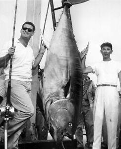 "Ted Williams Bluefin Tuna Fishing - 8"" x 10"" Photo - 1960's - Boston Red Sox"