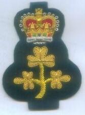 UK Irish Ireland Heraldry Deputy House Lord Parliament  Uniform Cap Badge Civic