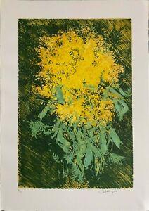 Giancarlo Cazzaniga MIMOSE litografia  50x35 firmata numerata 5/99 la Spirale