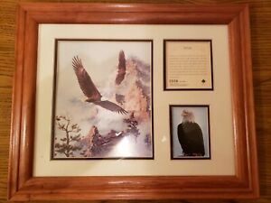 """Rick Kelley """"Soaring The Peaks"""" Limited Edition Framed Print #8 of 12,500"""