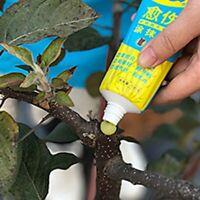 Garden Fruit Bonsai Tree Pruning Grafting Cutting Paste Wound Sealant  Lizzj