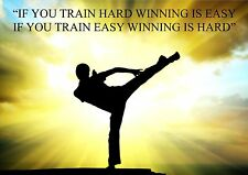 KARATE, KUNG FU INSPIRATIONAL / MOTIVATIONAL QUOTE POSTER / PRINT / PICTURE