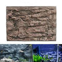 Acuario Espuma Roca Piedra Pecera Fondo Pared 3D Reptil Terrario Vivarium