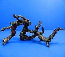 Tree trunk SET Aquarium Ornament Driftwood resin - Decor root Decaying fish tank