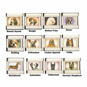 Stainless Steel 9MM Italian Charms Dogs Charms #1 Bichon Chihuahua More U Pick