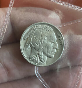 Us Nickel 5 Cents 1920 Superb UNC