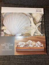 Threshold Unscented vase filler sea shells 1.8lbs Indoor Decoration Discontinu