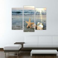 Leinwand Keilrahmenbild Kunstdruck Wandbild Canvas Muscheln 3tlg. 60x75