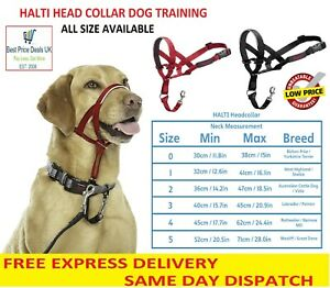 Halti Head Collar Dog Training Obedience Stop Pulling on Lead No Pull Solution..
