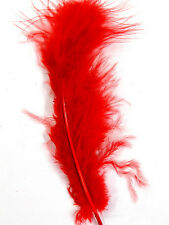 "30 Pcs MARABOU PLUMAGE Feathers 2-5"" RED; Crafts/Halloween/Mardi-Gras/Hats"