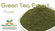 Green Tea Extract 98% - Natural Antioxidant Source 50g FREE UK Delivery