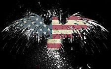 Framed Print-Bandiera americana come un FALCO (PICTURE POSTER Animale BIRD USA ART)