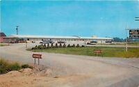 Montpelier Ohio~Exit 2 Motel~Route 15~Bob Hamilton~1950s Cars~Postcard