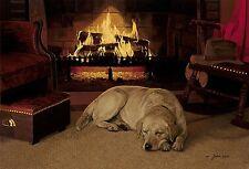 John Weiss OUR FAVORITE PLACE art print Yellow Labrador Retriever, Dog