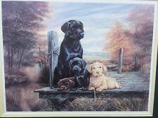 Wonderful Vintage Print Black Labrador Retriever Dog Chocolate Yellow Puppies