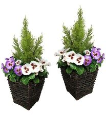 2 x Artificial Patio Planters - PURPLE & WHITE Pansies & Conifer/Cedar Topiary