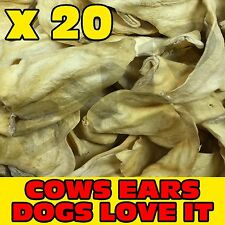 20 x TASTY COW COWS BEEF EAR EARS DOG PET TREAT CHEW SNACK - VALUE
