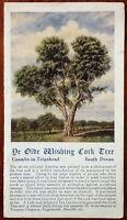 Ye Olde Wishing Cork Tree, Coombe-in-Teignhead, South Devon, Tourist Promotional