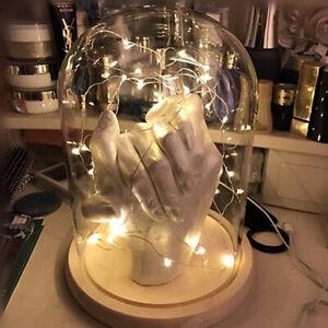 LED Licht Glasglocke Deko Glas Kuppel Nachtlicht Glashaube Glasdom Weihnachten