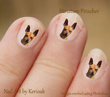 Miniature Pinscher, Min Pin Portrait,   Set of 24 Dog Nail Art Stickers Decals