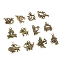 Zodiac Sign Charms Pendants Beads DIY for Necklace Bracelet Jewelry Making