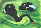 "Vintage Australian Art CANVAS PRINT Black Swan 16""X12"""