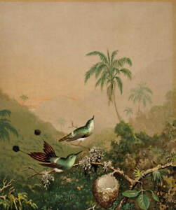 Martin Johnson Heade Brazilian Hummingbirds Giclee Paper Print Poster