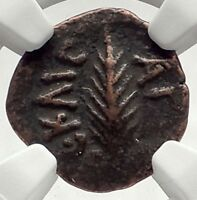 Biblical Jerusalem Saint Paul NERO PORCIUS FESTUS Ancient Roman Coin NGC i70955