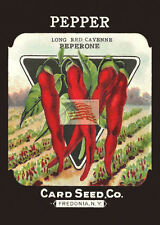 card seed co PEPPER LONG RED CAYENNE as a 5x7 picture seed pack fredonia ny