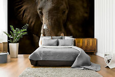 Kids room wall mural photo wallpaper Elephant Ivory FREE adhesive Feature wall