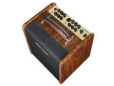Richwood RAC 50 Akustik Amp Verstärker Gitarre Mikro Amp 50 Watt Live Amp Bühne