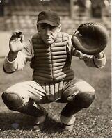 1939 Brooklyn Dodgers Catcher Hank De Berry Type 1 photo 8x10