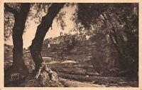 San PAUL la ville attraverso gli alberi di ulivo (Francia)