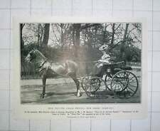 1905 Miss Pauline Chase Driving Her Smart Turn-out