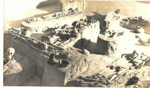 REAL PHOTO POSTCARD BURIAL MUSEUM MOUND STATE MONUMENT MOUNDVILLE AL SKELETONS