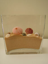 Hand-Made Sand Filled Ornament (Seashell Inspired)