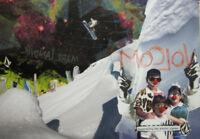 BURTON snowboard 2011 Road Soda Cheech and Chong HUGE Poster New old stock