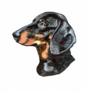Machine Embroidered Dachshund Applique  Sizes    5.7W X 5.5H or  2.9W X 2.7H