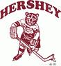Hershey Bears AHL Vintage Logo Hockey Mens Embroidered Polo XS-6XL, LT-4XLT New