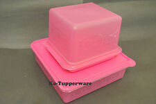 Limited Tupperware Sandwich bread dessert snack stor serving container purple