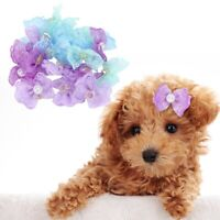 20Pcs Pet Hair Bows Rubber Bands Small Dog Cat Lace Bowknot Hair Rope Multicolor