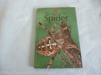 Vintage Lady Bird Book The Story Of The Spider series 651