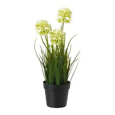 "Fejka Artificial potted plant, allium white, 3 ½ "" Ne"