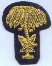 Civil War CSA Army State SC Carolina Pembroke Palm Hat Uniform Officer Badge Cap